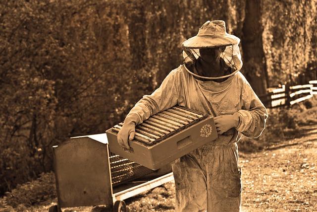 Pszczelarz