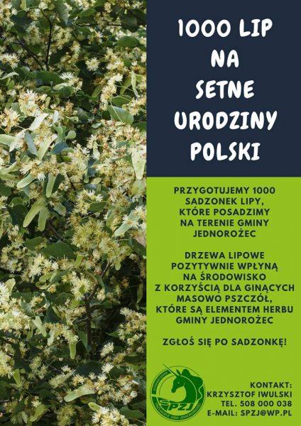 Plakat - 1000 lip na 100 urodziny Polski